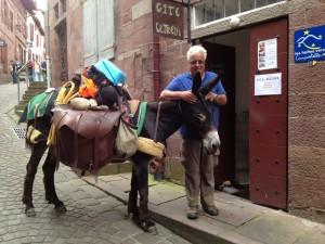 Les ânes et les chevaux sont aussi nos amis à Ultreïa