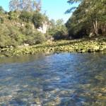 Un bâton pour sonder les ruisseaux